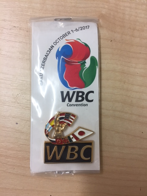 Limited edition WBC gold coloured logo pin
