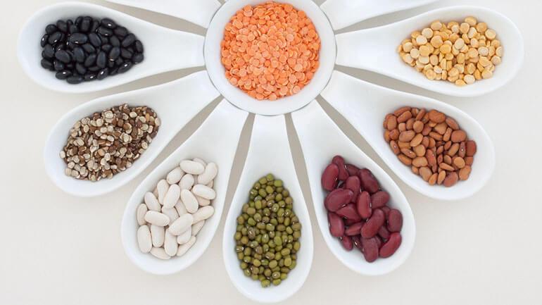 WBC ME Long life food - beans (1)