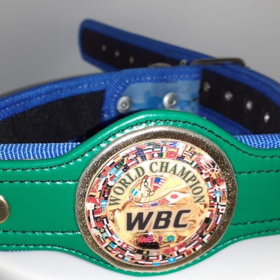 WBC Championship Belt Blue Camo Dog Collar