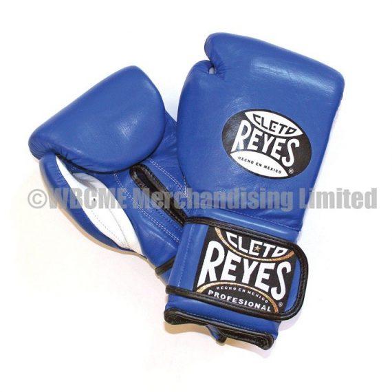 Cleto Reyes Universal Training Gloves