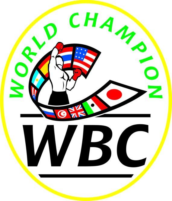 WBC World Champion Patch